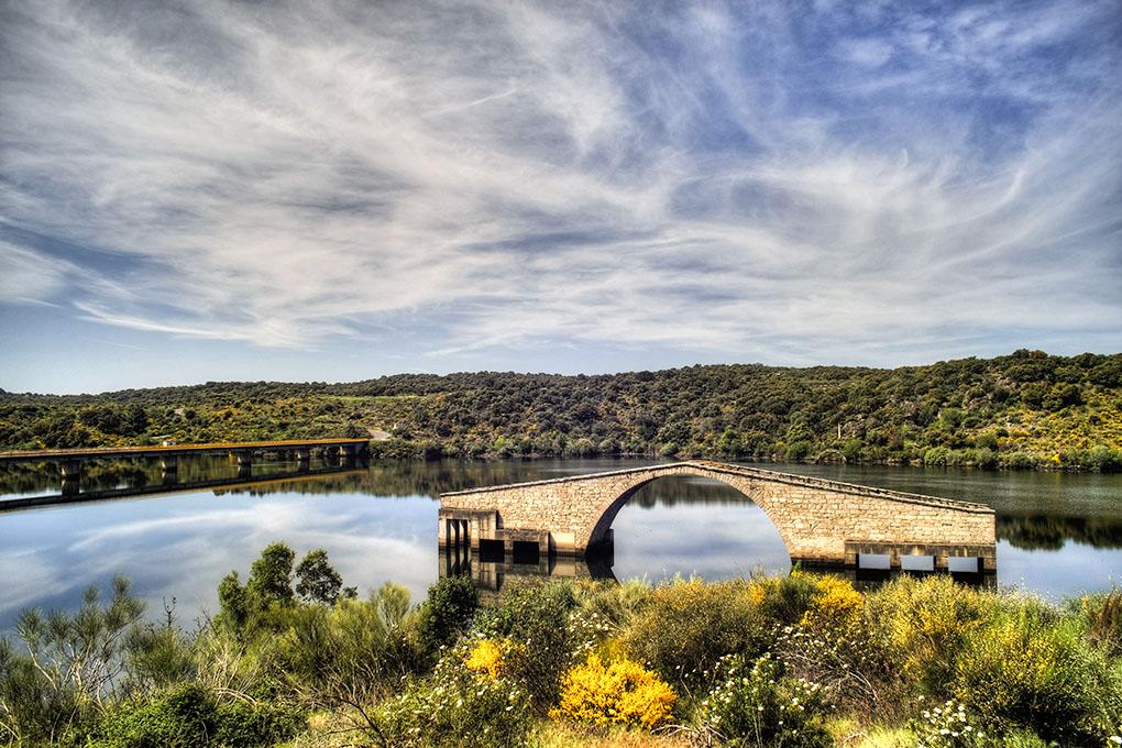 Un puente romano perdido en medio del pantano.