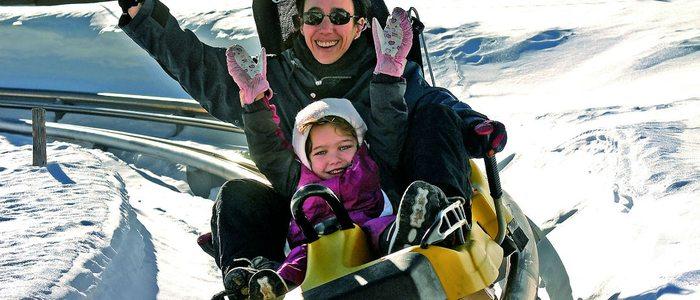 El trineo ruso, una divertida actividad sin esquís./ Imagen cedida por: Cetursa Sierra Nevada.