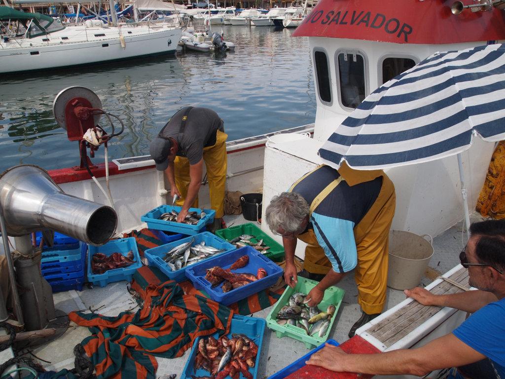 Cabo de Palos sigue siendo un pueblo dedicado a la pesca. Foto: Ramón Peco y Manuela Martínez.