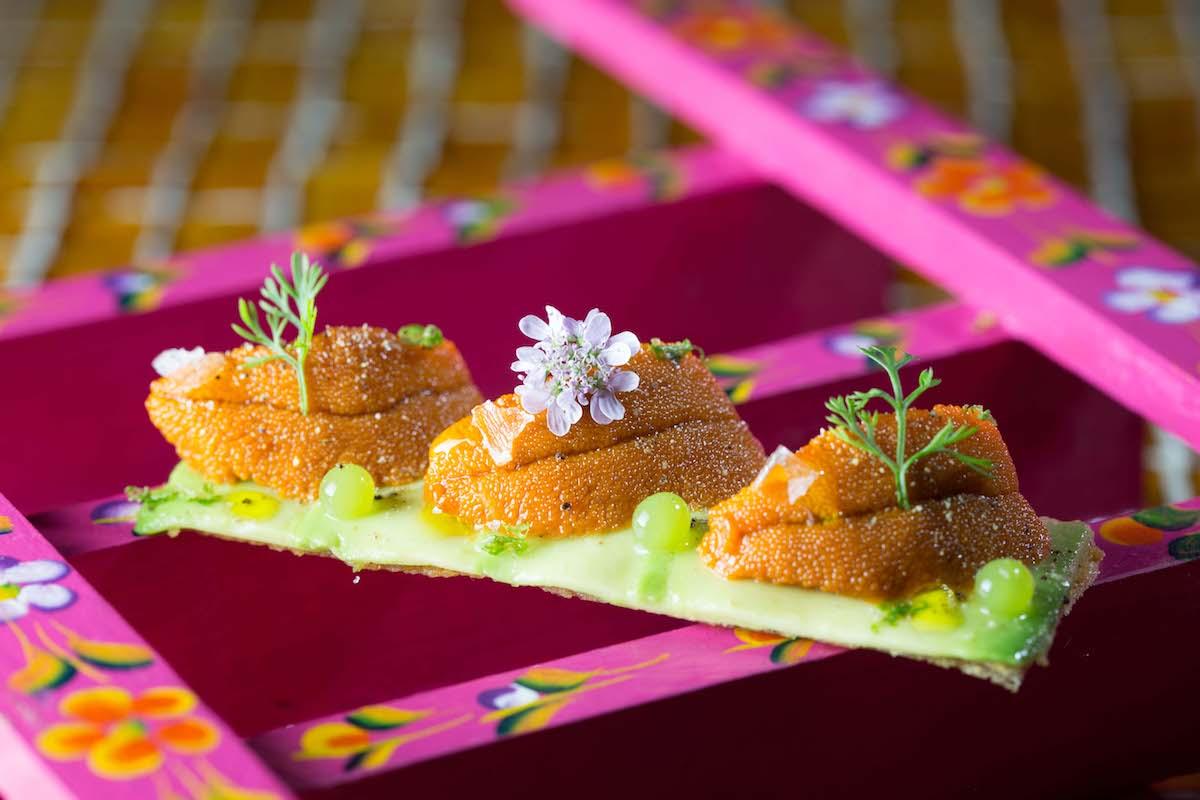 Tosta de erizos y aguacate del nuevo restaurante mexicano de Albert Adrià, 'Hoja Santa'. Foto: cedida.