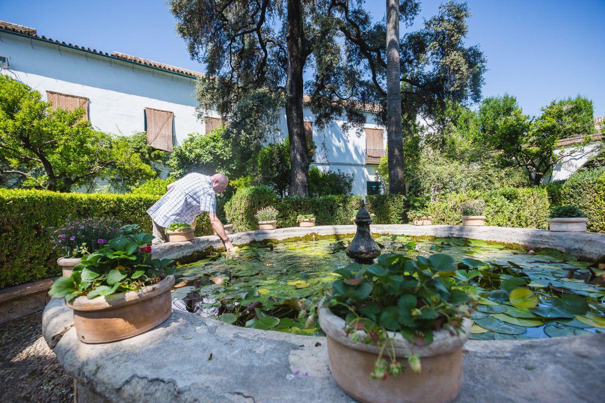 La fuente repleta de nenúfares de El Jardín invita a refrescarse.