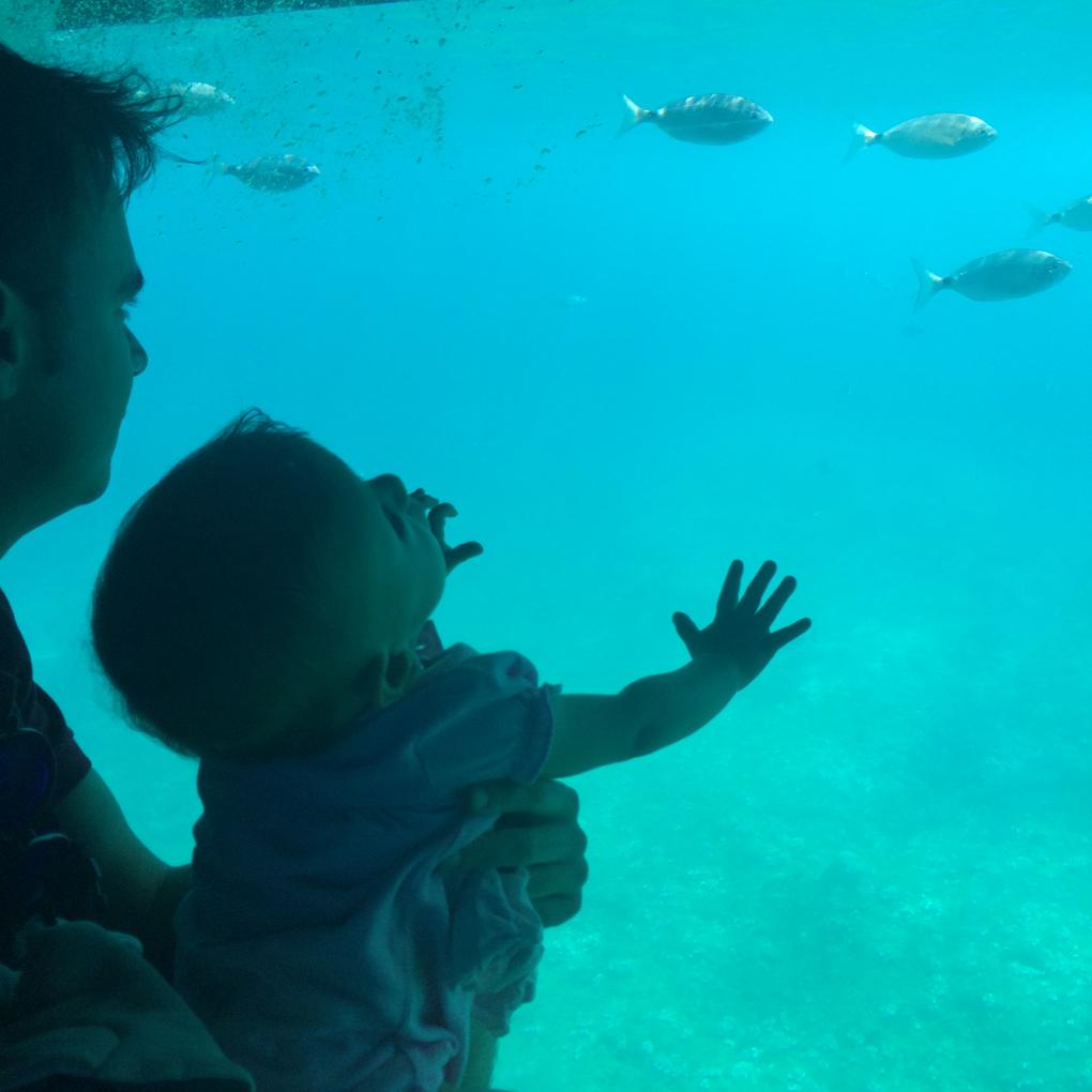 Una excursión que triunfa entre los más pequeños (y mayores). Foto: Johanna Saldón.