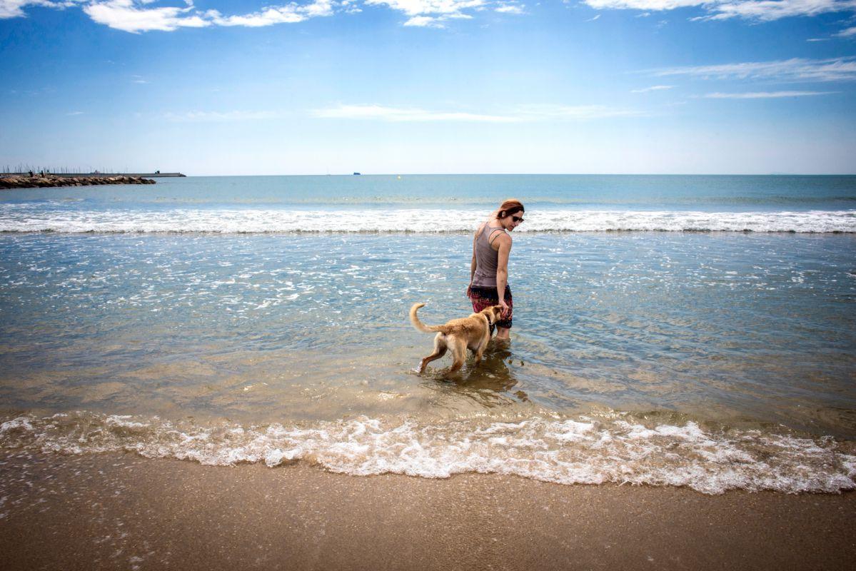 Jugando con el perro en la orilla de la playa Pinedo, en El Saler (Parque Natural de La Albufera, Valencia).