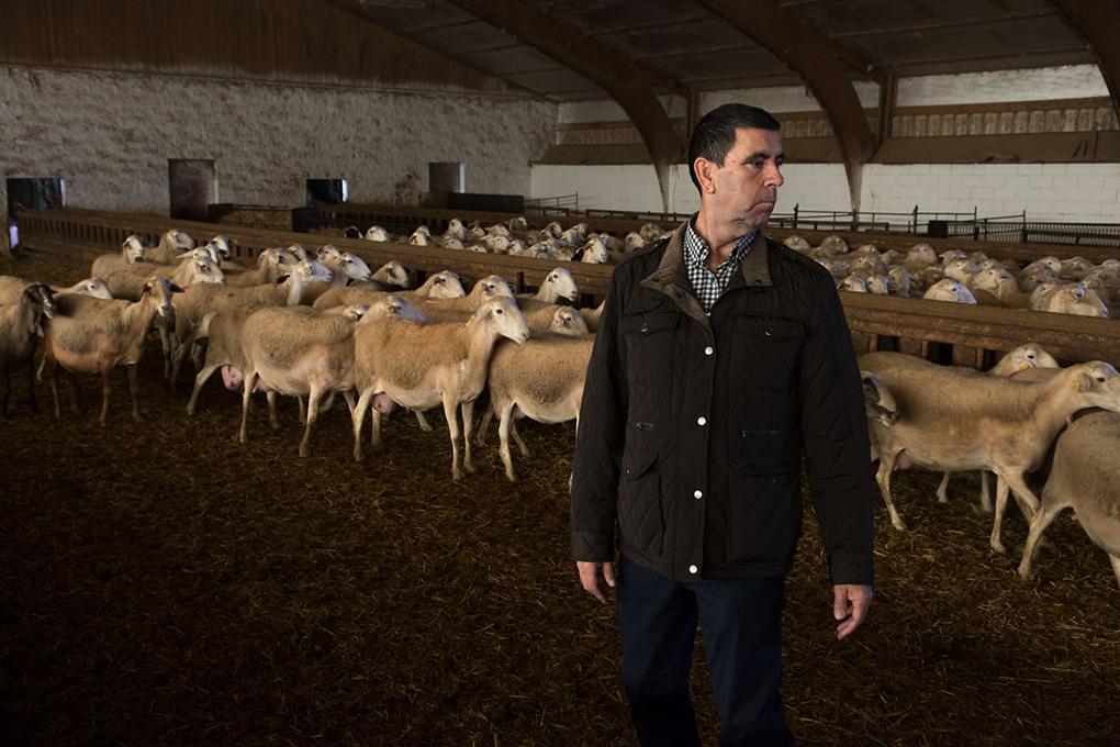 Siete pastores integran la quinta generación de ganaderos de La Casota.