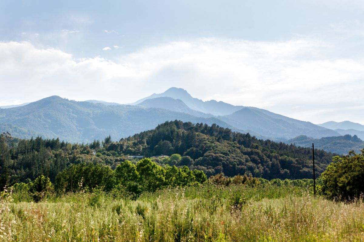 A lo lejos, el pico Les Agudes.