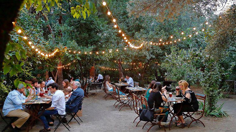 Planes de verano en Madrid: noches del Botánico, Autocine y noches del olivar