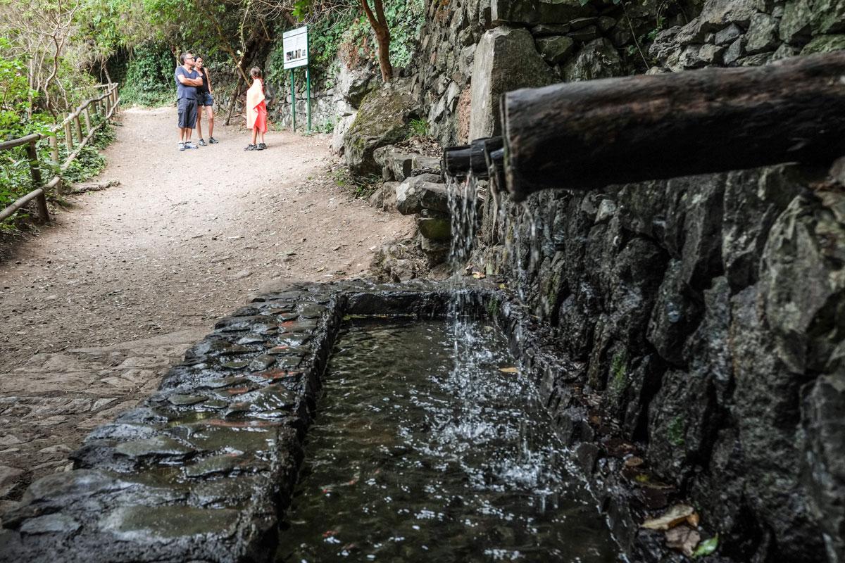 La Gomera: Chorros de Epina en el Parque Nacional de Garajonay. Foto: Hugo Palotto
