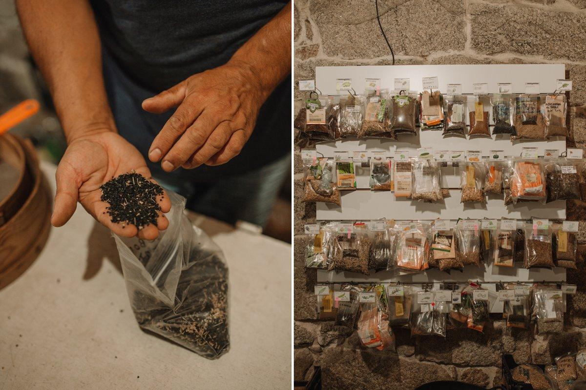 Semillas de cebolla de la casa a medio procesar y banco de semillas.