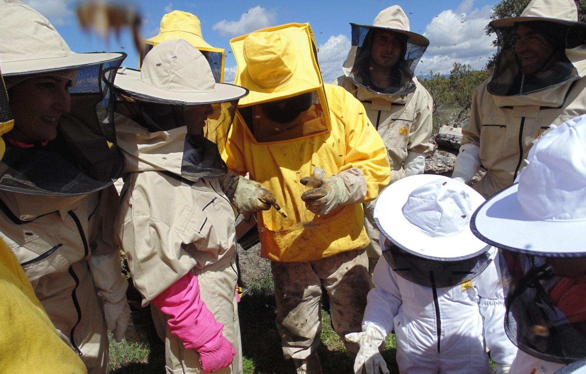Un grupo de personas de todas las edades practican y conocen la apicultura, en el Jabardo SAT.