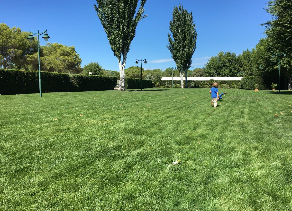 Espacio verde para correr, ¡viva! Foto: B.V.