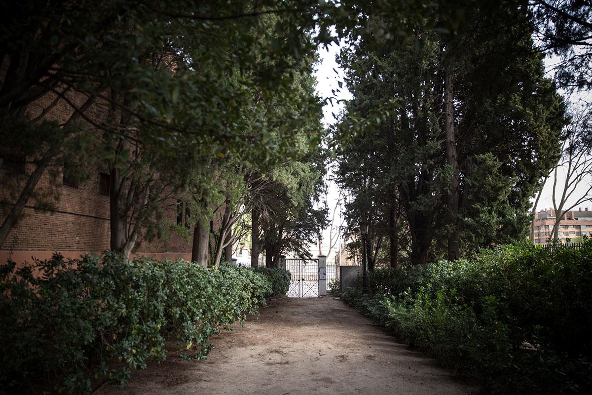 Camino rodeado de cipreses que accede al cementerio de La Florida, en Madrid.
