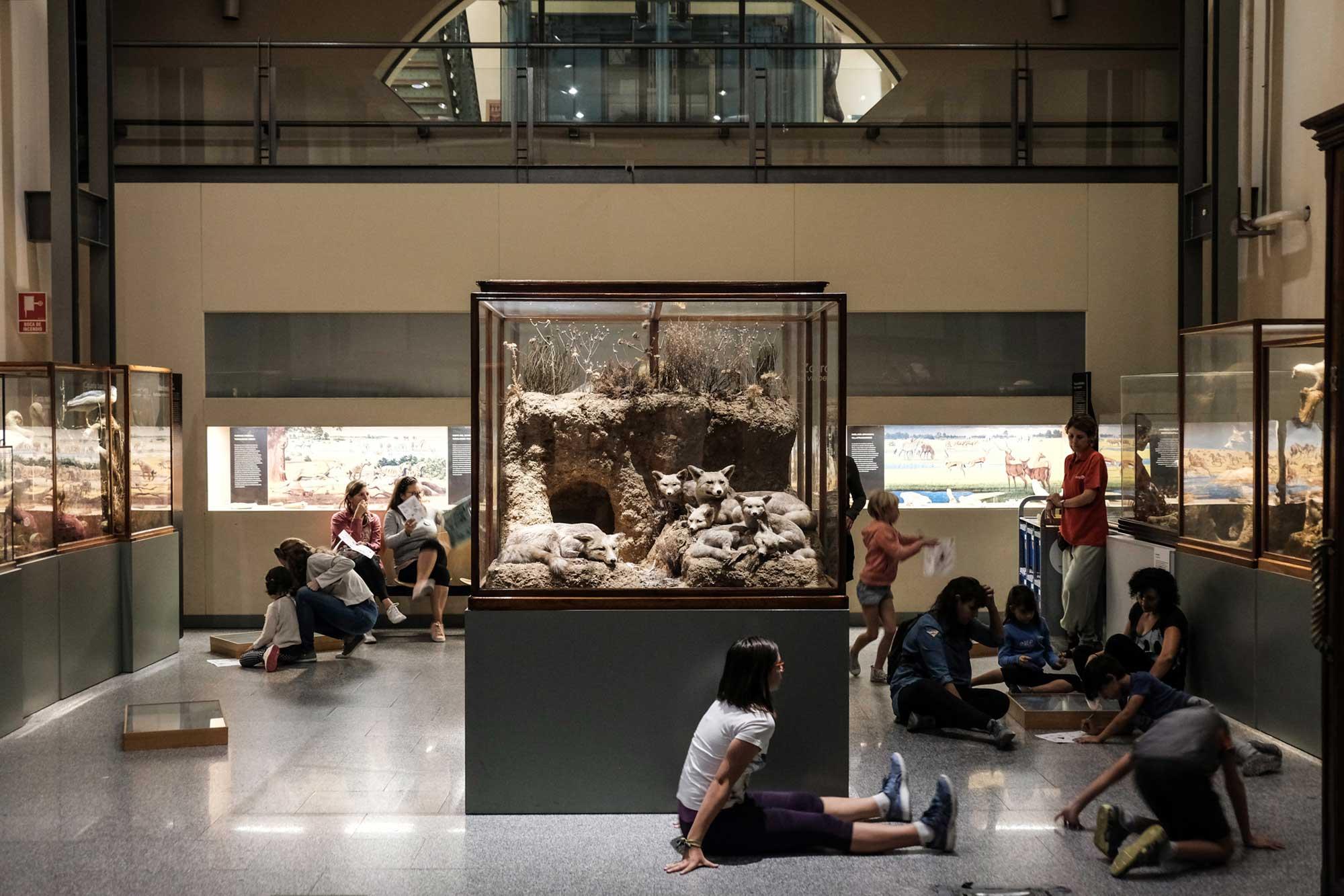 Cualquier zona del museo es apropiada para sentarse y seguir investigando.