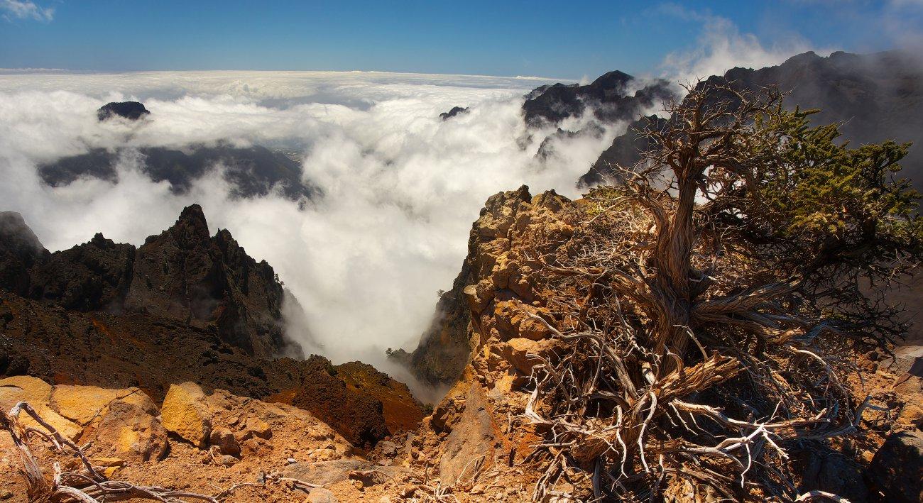 Parque Nacional Caldera Taburiente: Mar de nubes