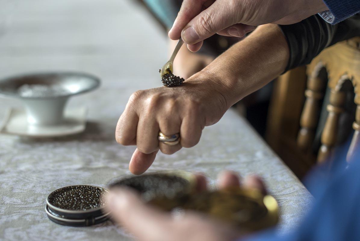 Sirviendo el caviar con una cuchara de nácar.