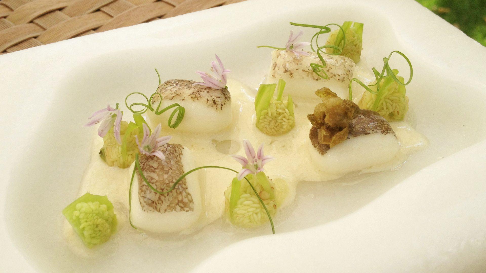 Plato estrella: Pequeños lomos de bacalao con semillas de padrón encurtidas