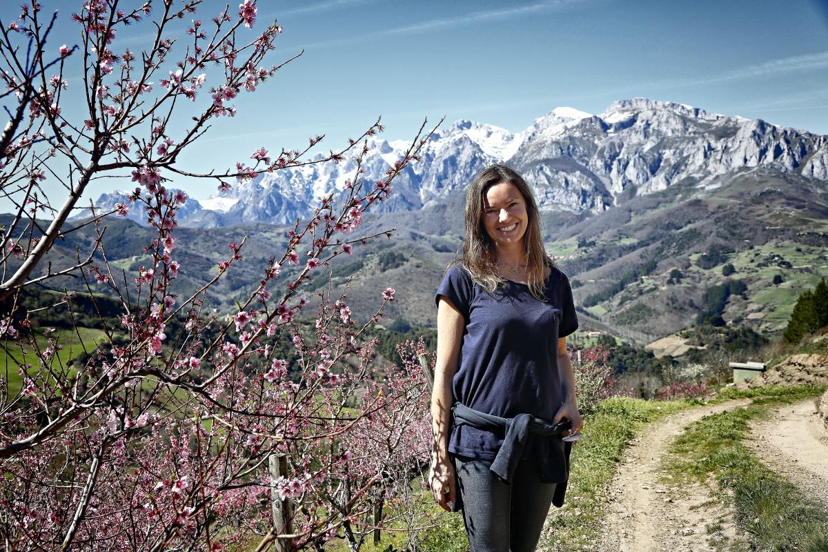 En estos viñedos, a los pies de los Picos de Europa, se cultivan garnacha, mencía y palomino.