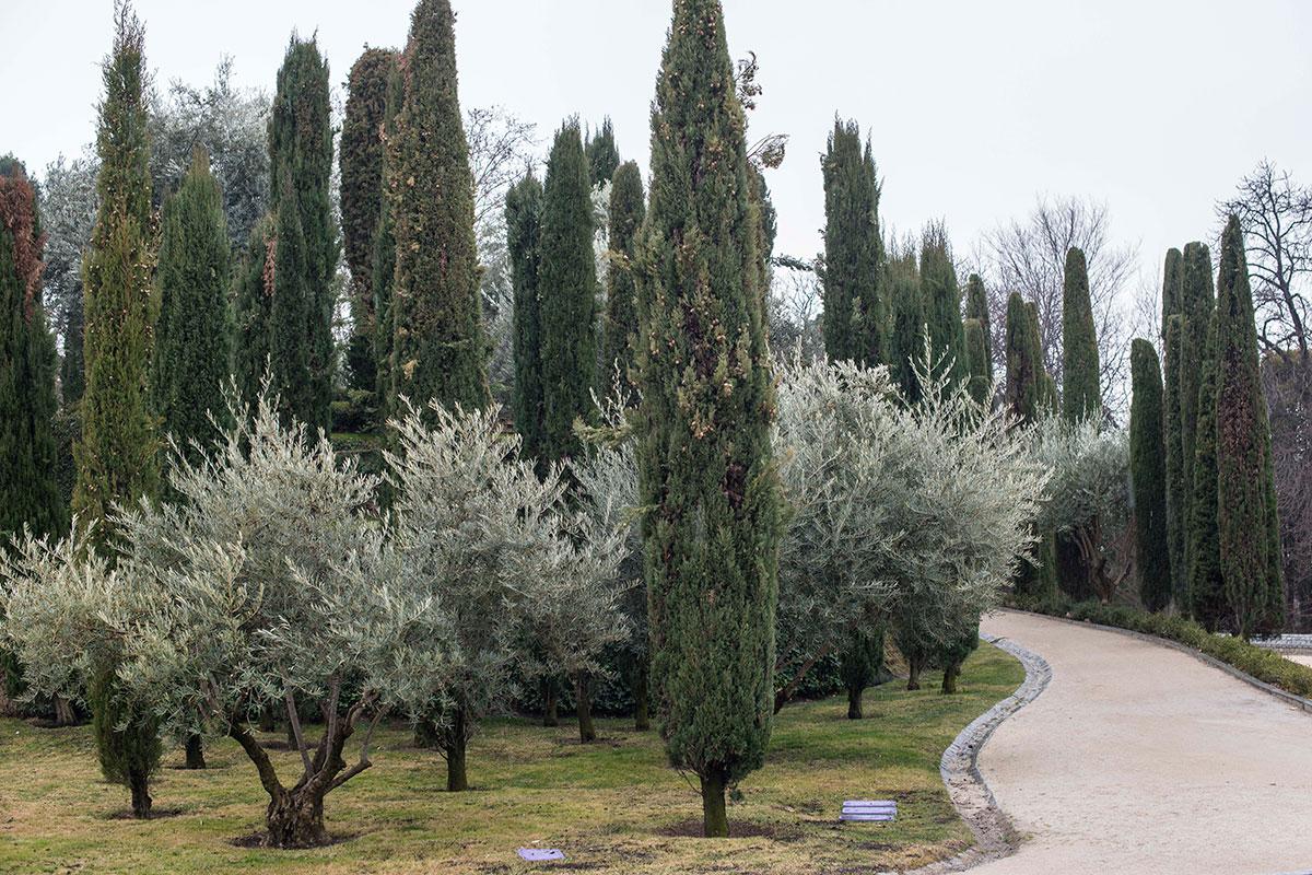 El Bosque del Recuerdo, uno de los últimos orgullos de los jardineros del parque madrileño.