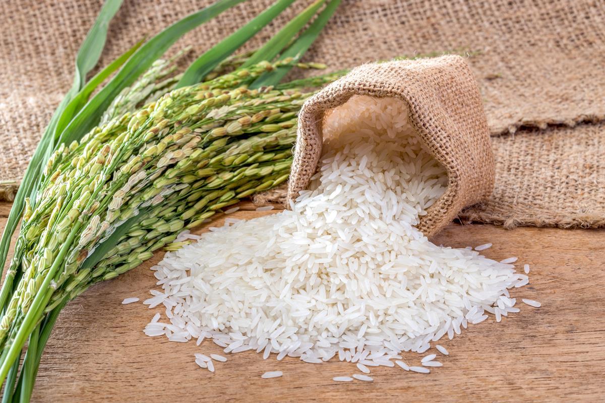 El arroz es un ingrediente cotidiano en América. Foto: Shutterstock.