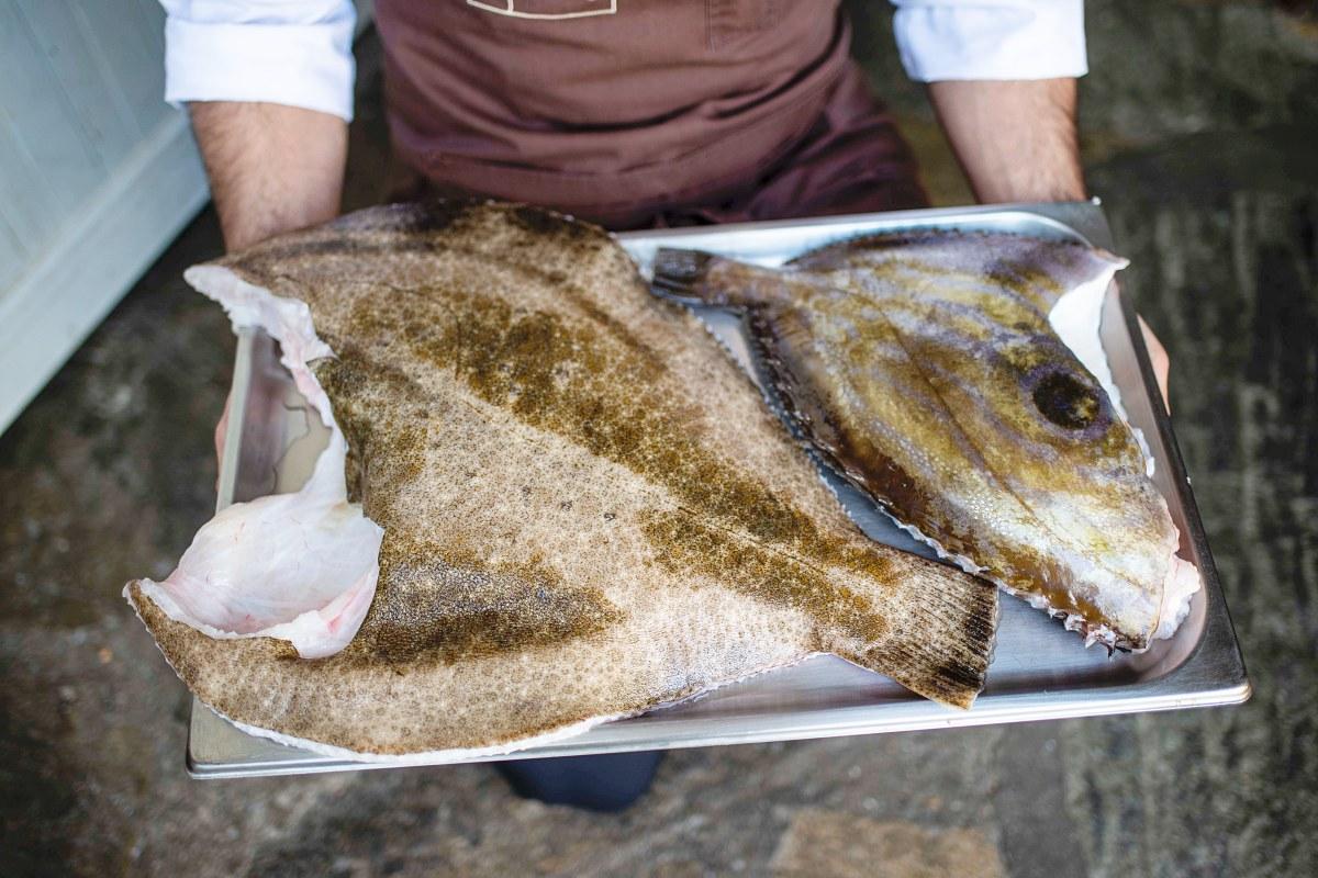 Tan espectacular como este Rodaballo de 'Artesans da Pesca', es el producto de Solla.