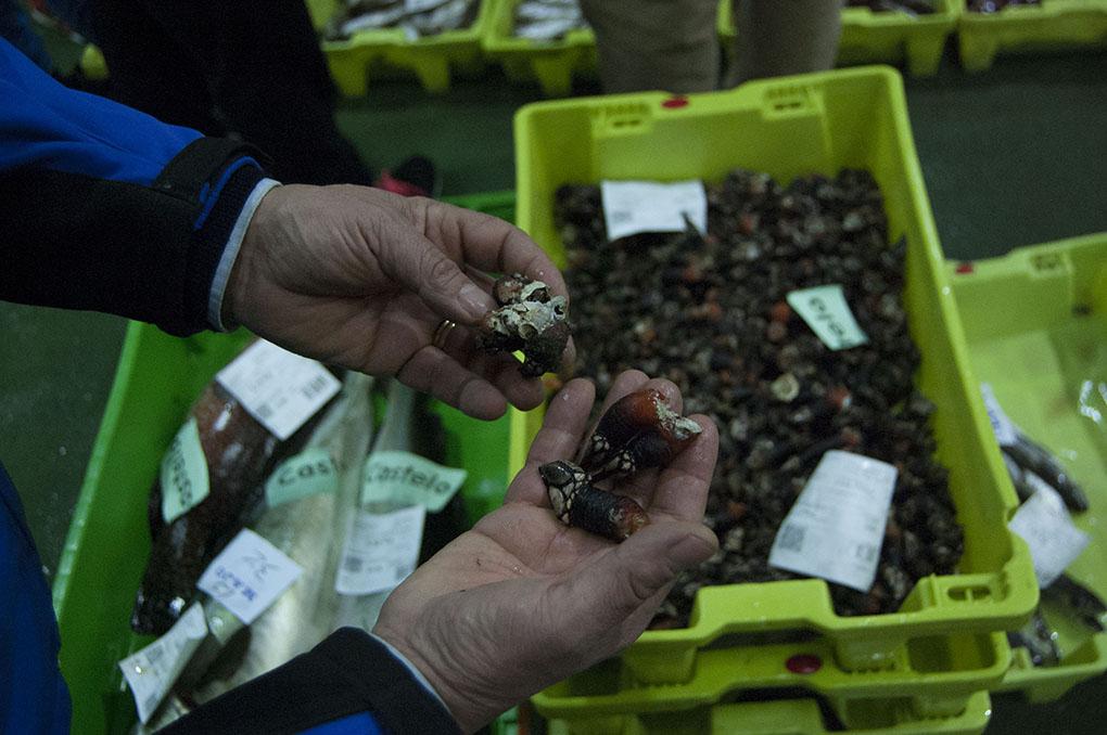 En 2015, se vendieron 183.800 toneladas de pescado y marisco en Galicia.