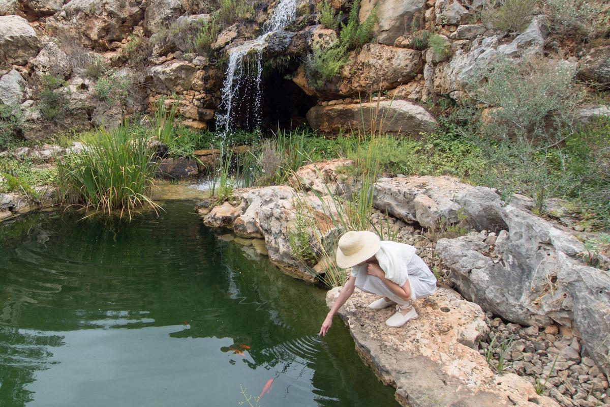 La buena gestión del agua hacen del Jardín de L'Albarda todo un referente, no solo a nivel estético.