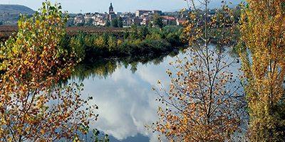 El Ebro a su paso por San Adrián.