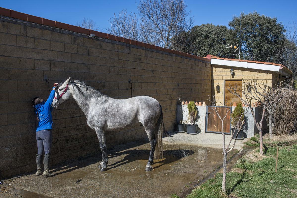 La casa del Palafrenero junto a los caballos, literalmente.