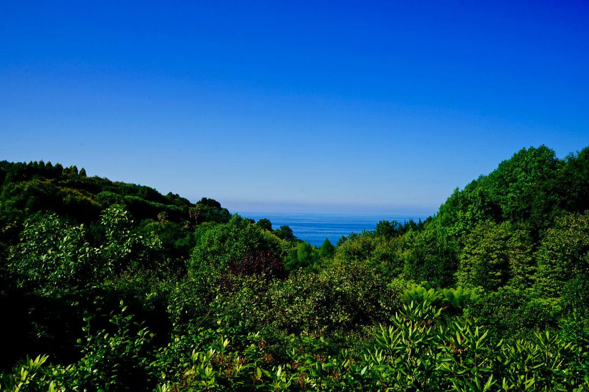 Vistas desde los jardines de la Fonte Baixa, en Luarca (Asturias).