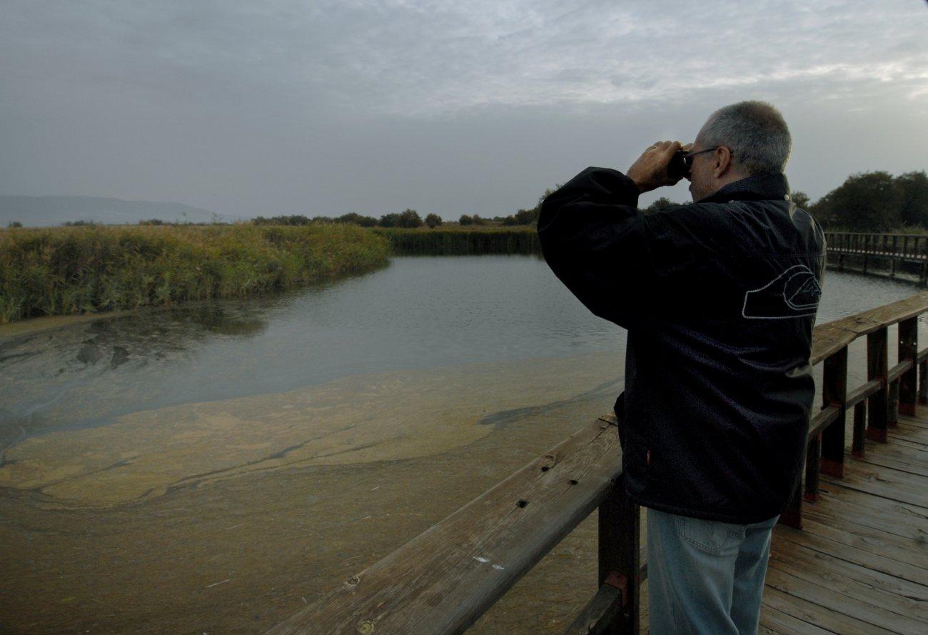 Parque Nacional Daimiel: turista contempla las tablas