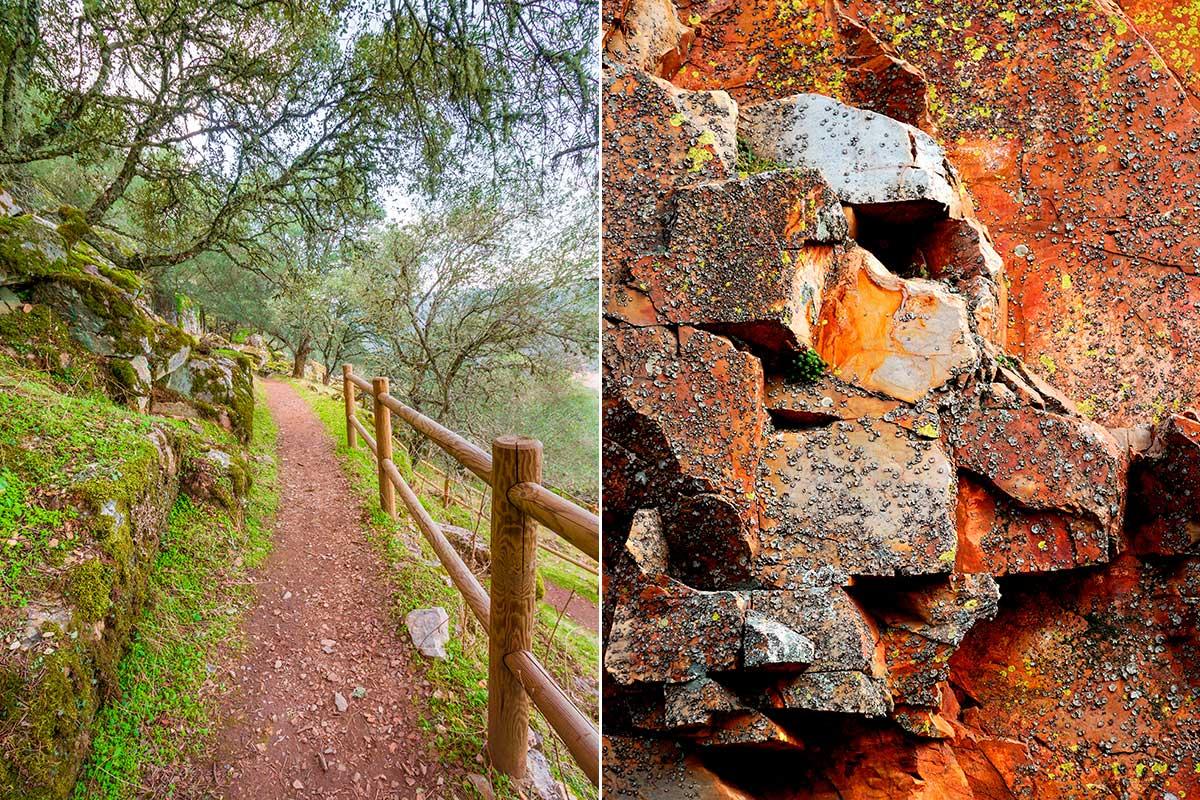 Senderos para perderse y rocas para estudiar colores y texturas. Foto: Shutterstock.