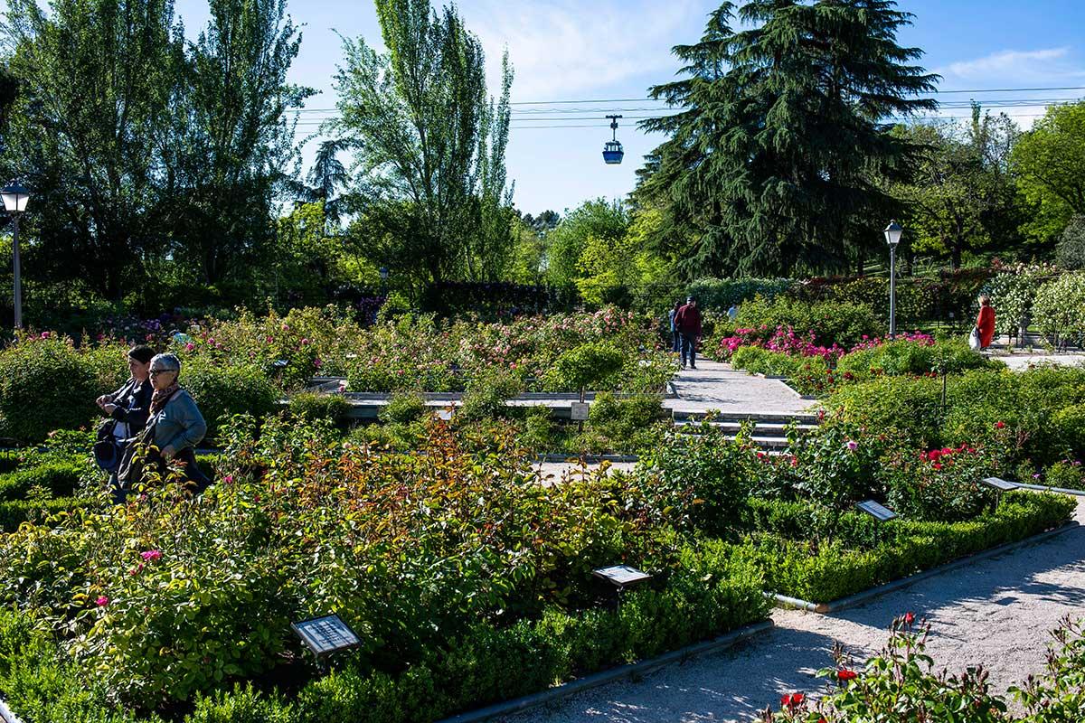 Vista del jardín de La Rosaleda con gente paseando y al fondo, el teleférico, en el Parque del Oeste, Madrid.