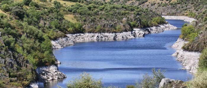 El río Tajo proporciona un gran caudal de agua para regar los campos de la comarca.