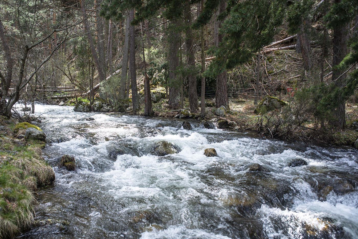 Cascadas de Sierra de Guadarrama: El Chorro de Navafría