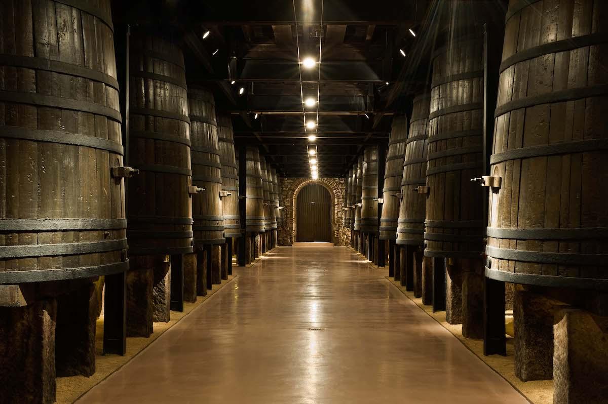 Sala de barricas de vino tinto.