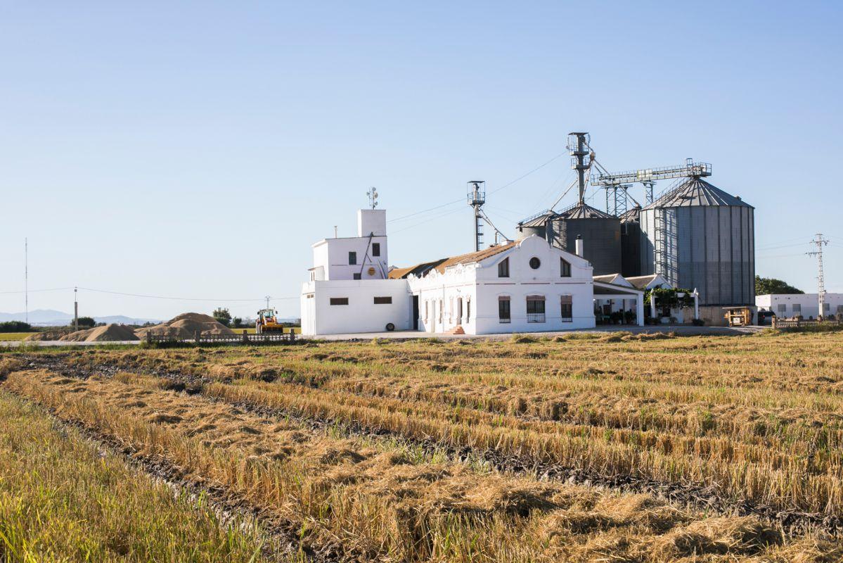 La Finca Estell y sus arrozales, en época de arado, en las inmediaciones de la laguna de L'Albufera.