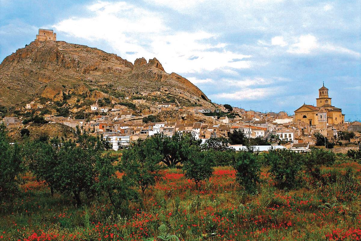 Vista de la localidad de Jumilla.