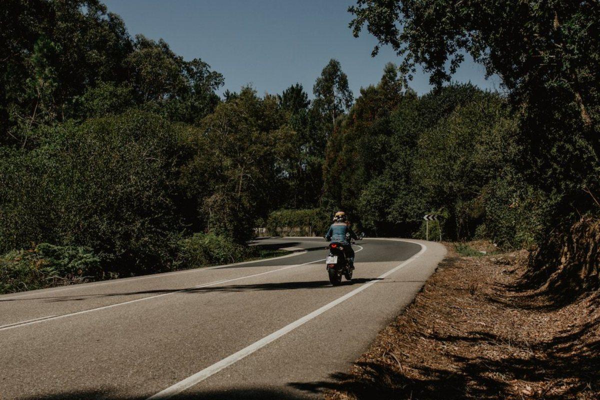 En las carreteras el verde es el protagonista.