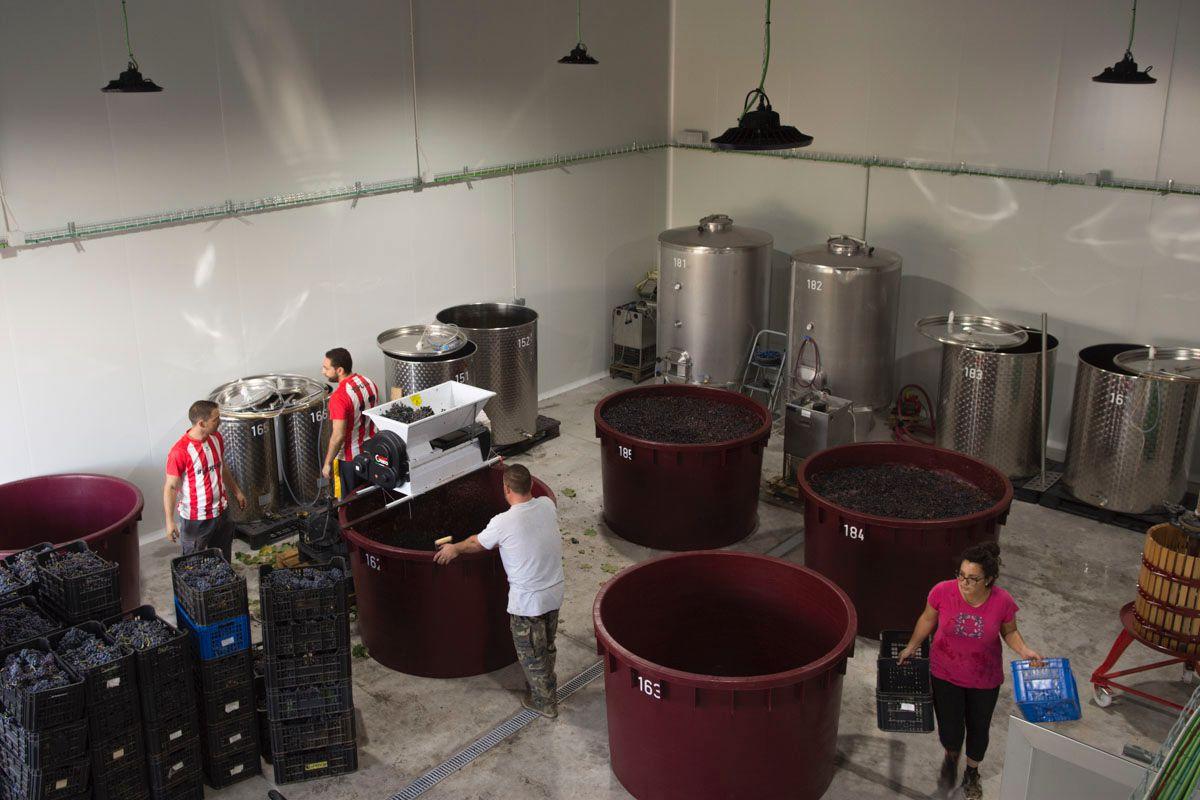 En la nueva bodega de Garage Wine colaboran los mismos que han vuelto de vendimiar.