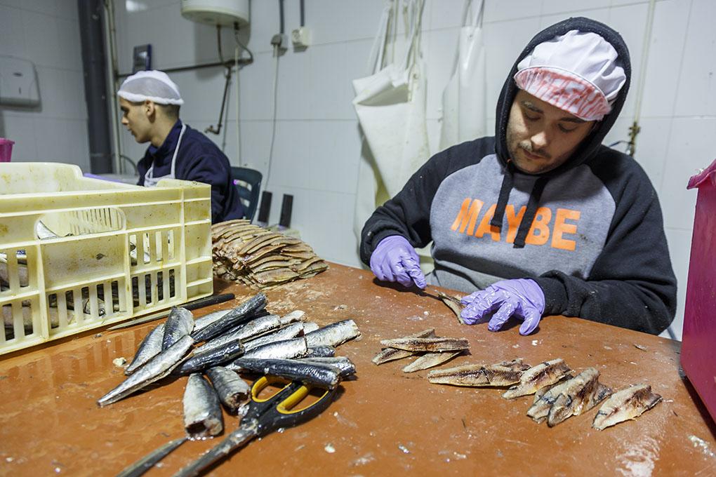 Las sardinas se limpian a mano. Se mantienen en salmuera entre ocho y doce días, lo que les da una textura casi cruda.