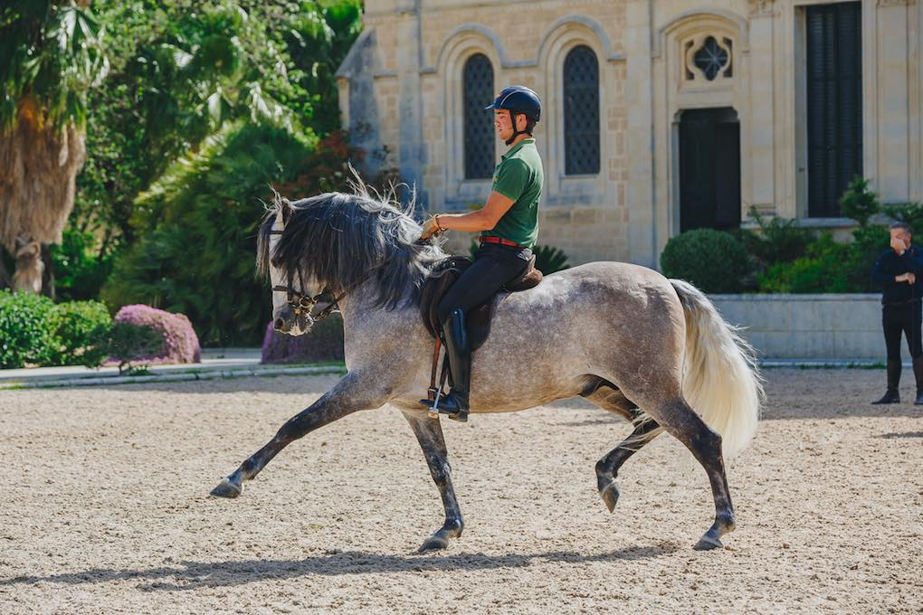 La comunicación entre jinete y caballo es vital.
