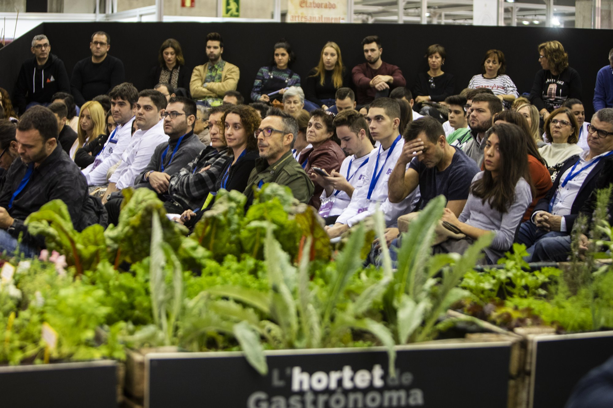 La audiencia contempla atenta las ponencias de los expertos.