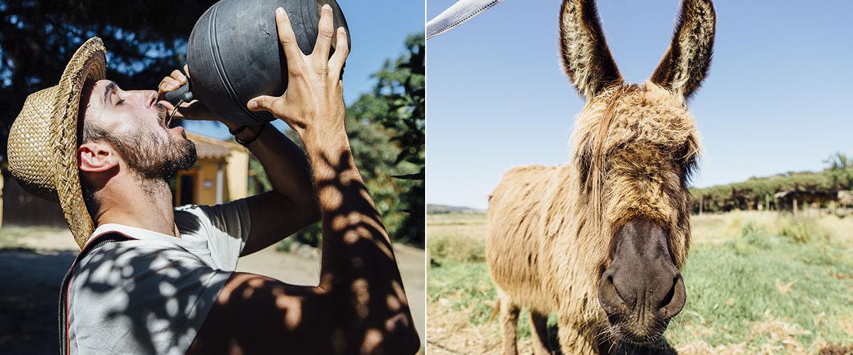 Bebemos del 'cantir' a lo payés: 'a galet' (a chorro) y saludamos al burro Domingo.