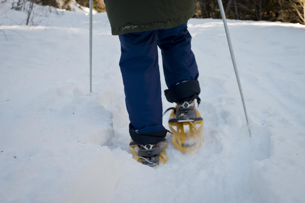 Primeros pasos para comprobar que las raquetas son asequibles a todas las edades y profundidades de la nieve.