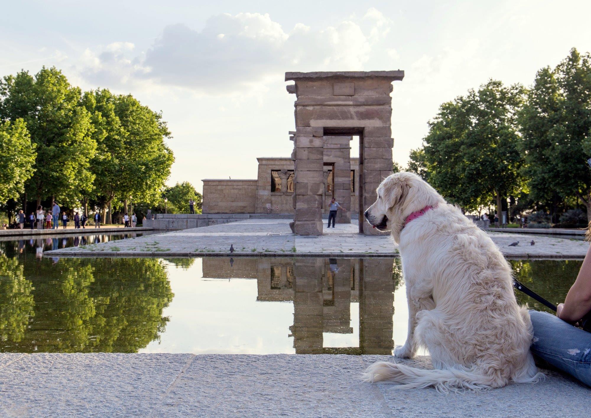Una parada en el Templo de Debod durante una ruta cultural por el centro de Madrid. Foto: Shutterstock