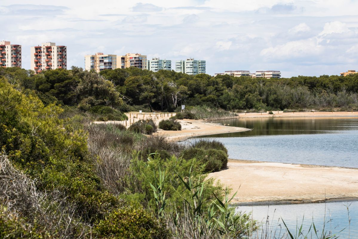 Bloques de apartamentos vacíos se levantan junto a la lagua de La Albufera (Parque Natural Albufera, Valencia).