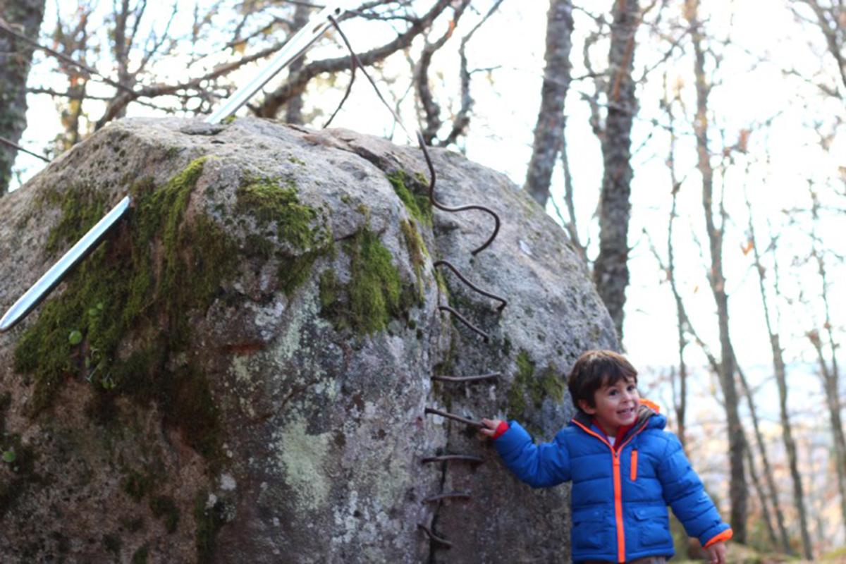 Descubriendo nuevas sorpresas en el Bosque de los Espejos.