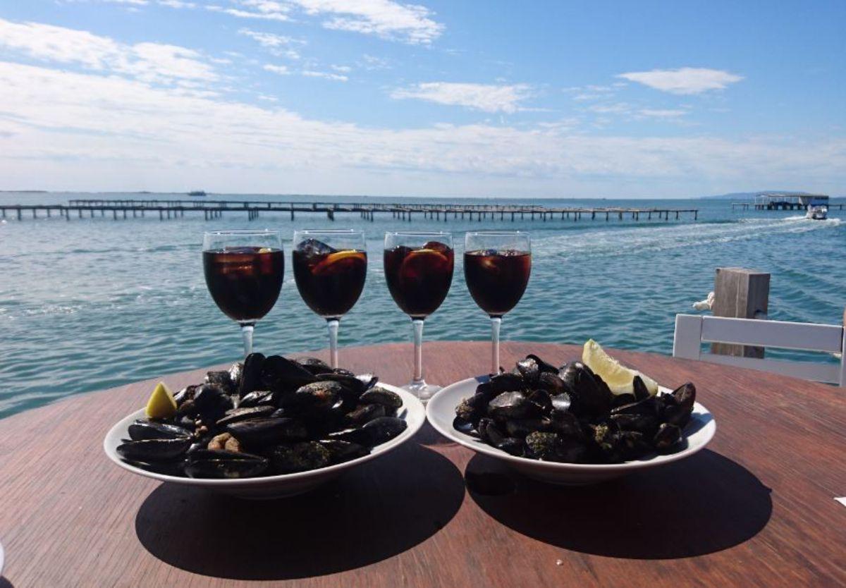Mejillones en el Musclarium, en la bahía del Alfacs. Foto: Musclarium.