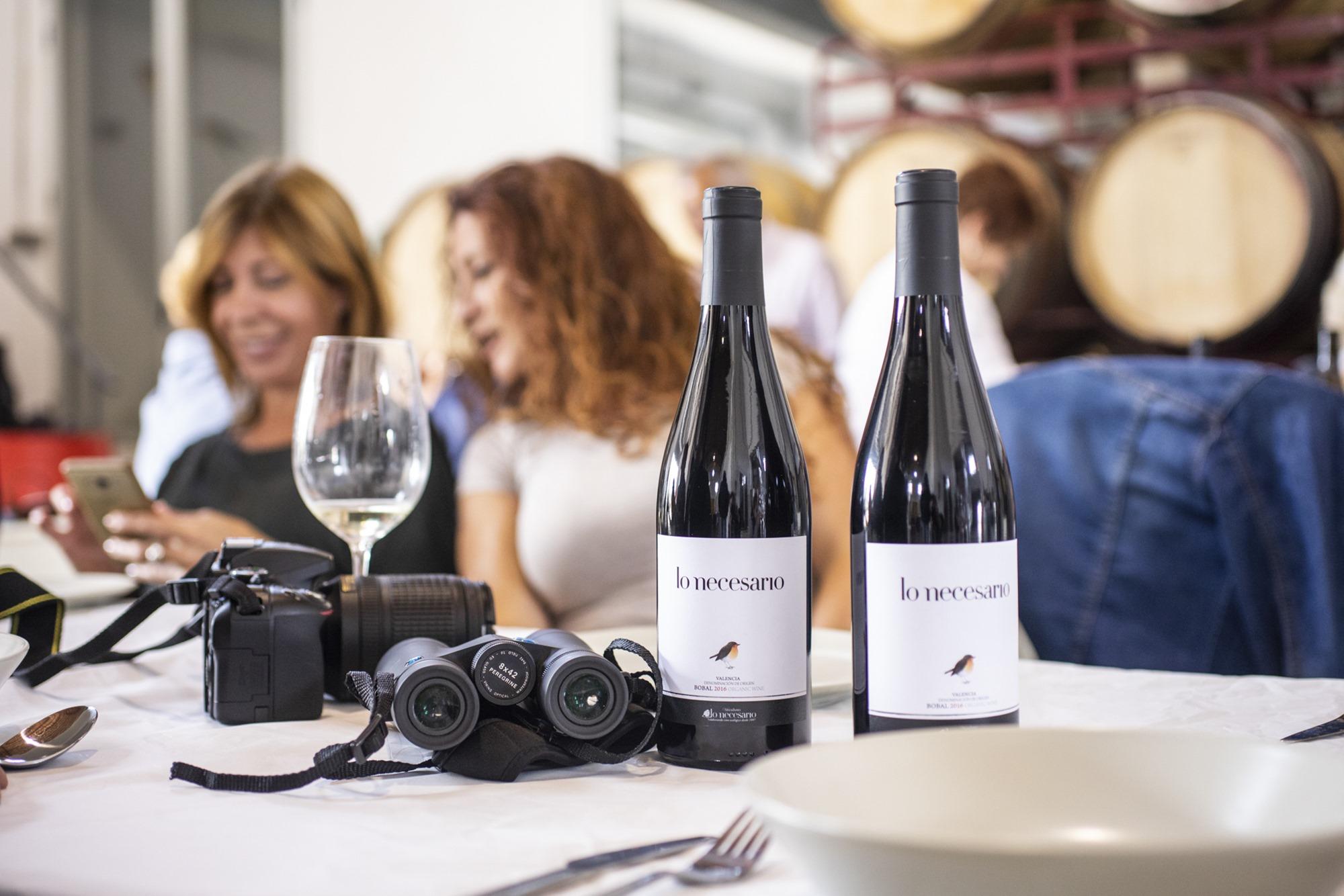 Relax tras la cata de vinos y la comida en la bodega de Fernández Pons en Casas del Rey.