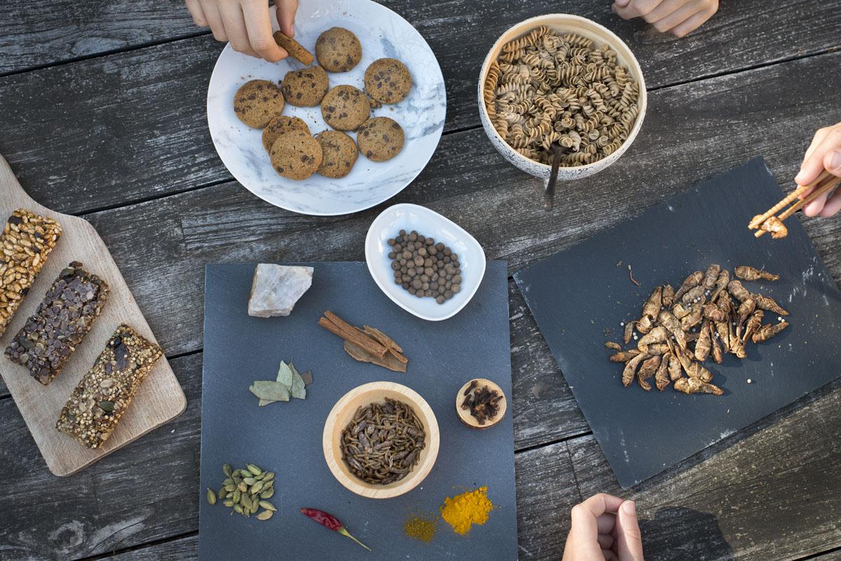 Los insectos son un alimento de lo más saludable.