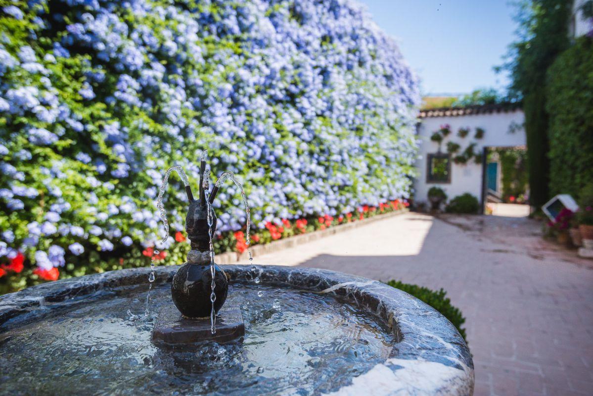 El Patio de Los Jardineros, con su fuente cantarina, cubierto totalmente de celestina.